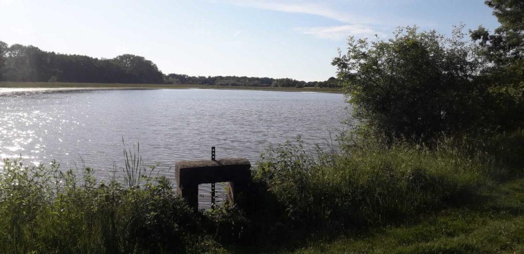 étang et vannes dans la Dombes